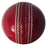 Cricket Equipment USA Leather Cricket Ball